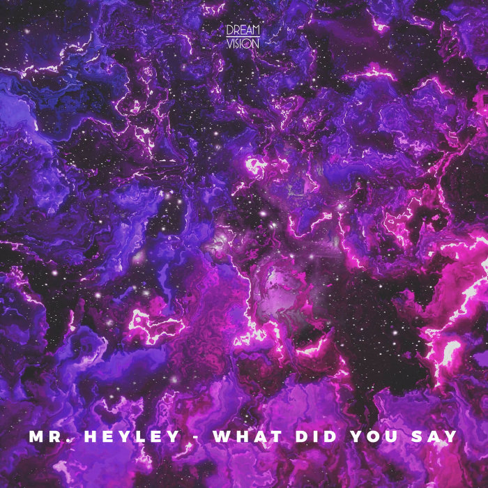 MR. HEYLEY - What Did You Say