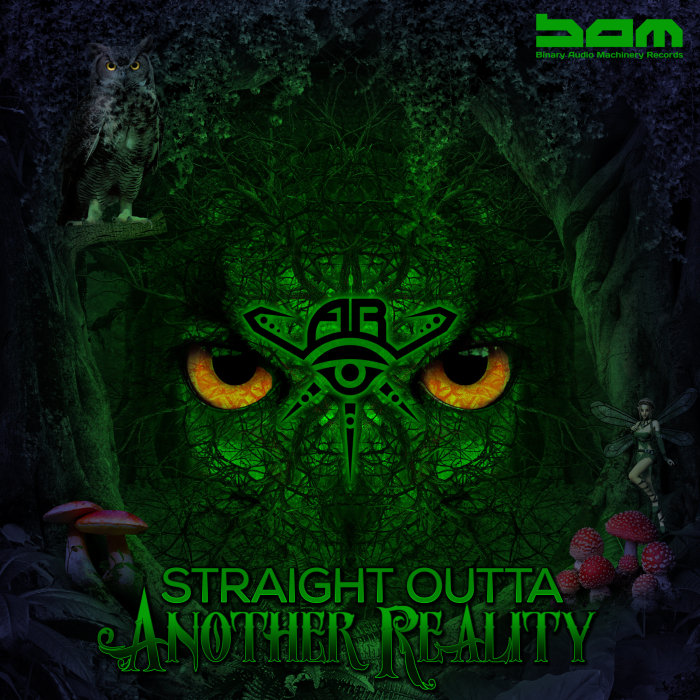 VARIOUS - Straight Outta Another Reality