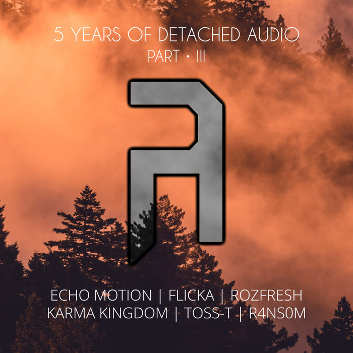 VARIOUS - 5 Years Of Detached Audio: Part 3