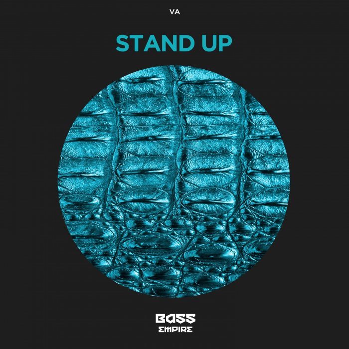 VARIOUS - Stand Up