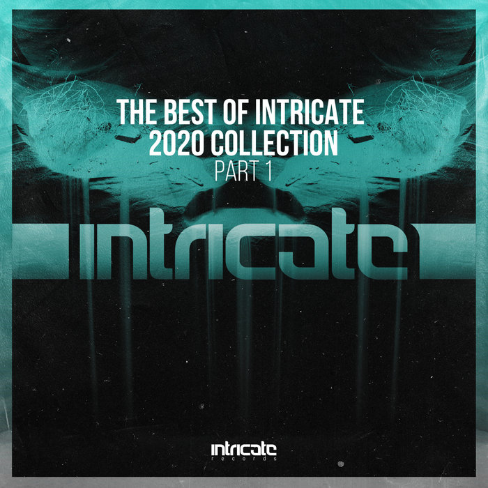 VARIOUS - The Best Of Intricate 2020 Collection Part 1