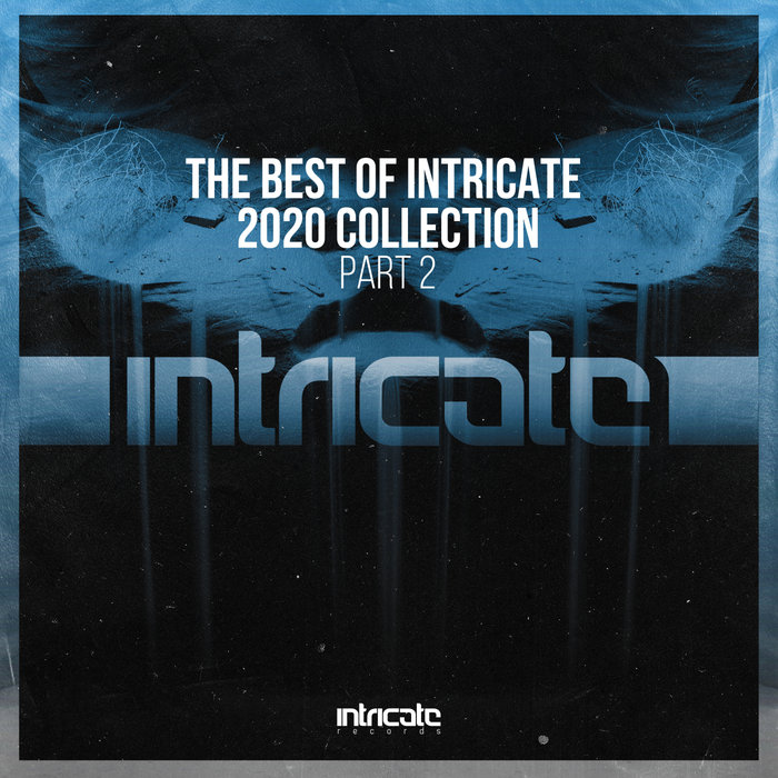 VARIOUS - The Best Of Intricate 2020 Collection Part 2