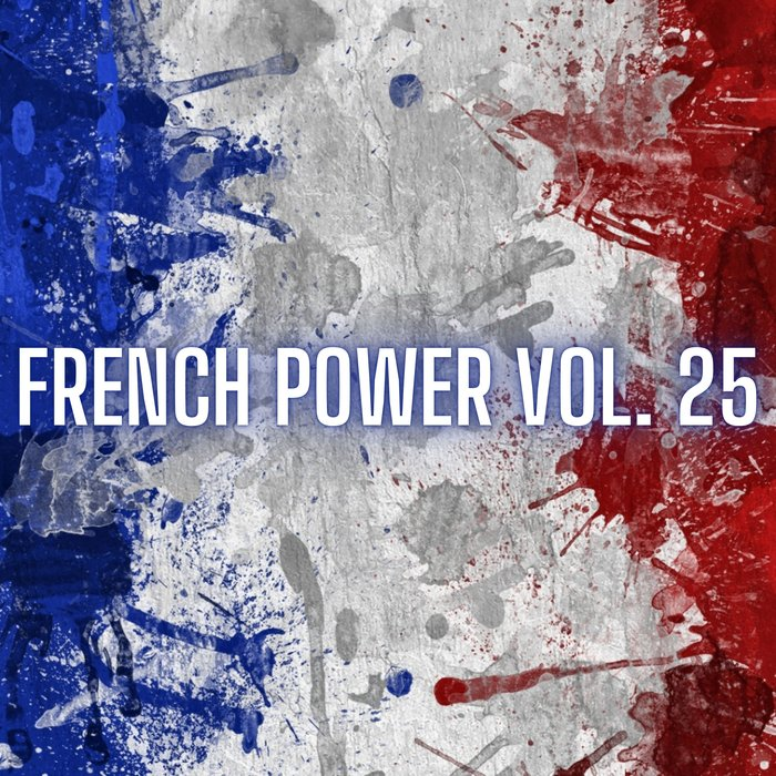 VARIOUS - French Power Vol 25
