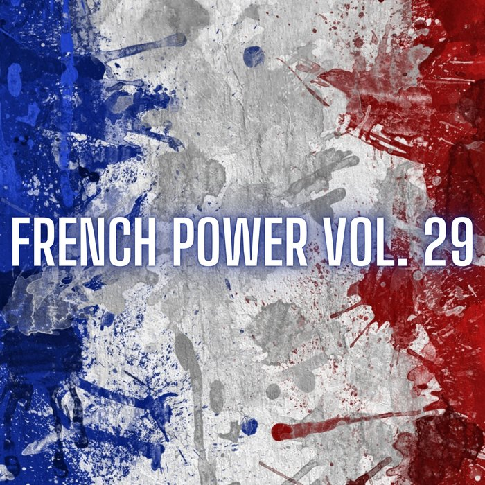 VARIOUS - French Power Vol 29