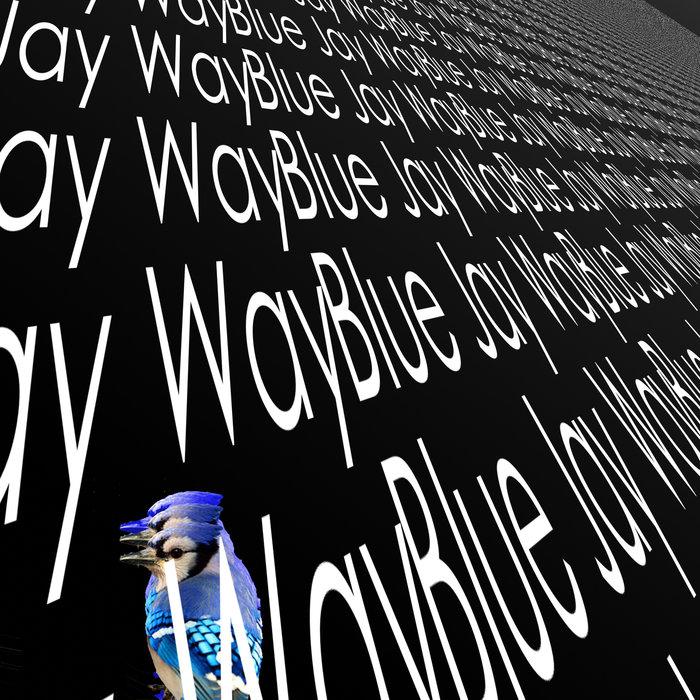 STARKEY - Blue Jay Way