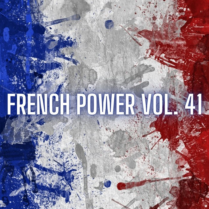 VARIOUS - French Power Vol 41