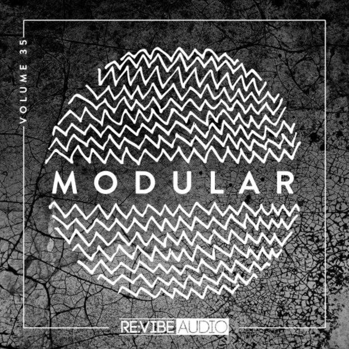 VARIOUS - Modular Vol 35