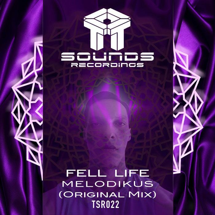 MELODIKUS - Fell Life