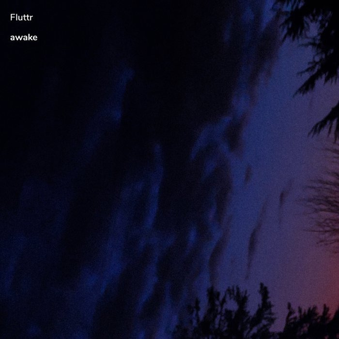 FLUTTR - Awake