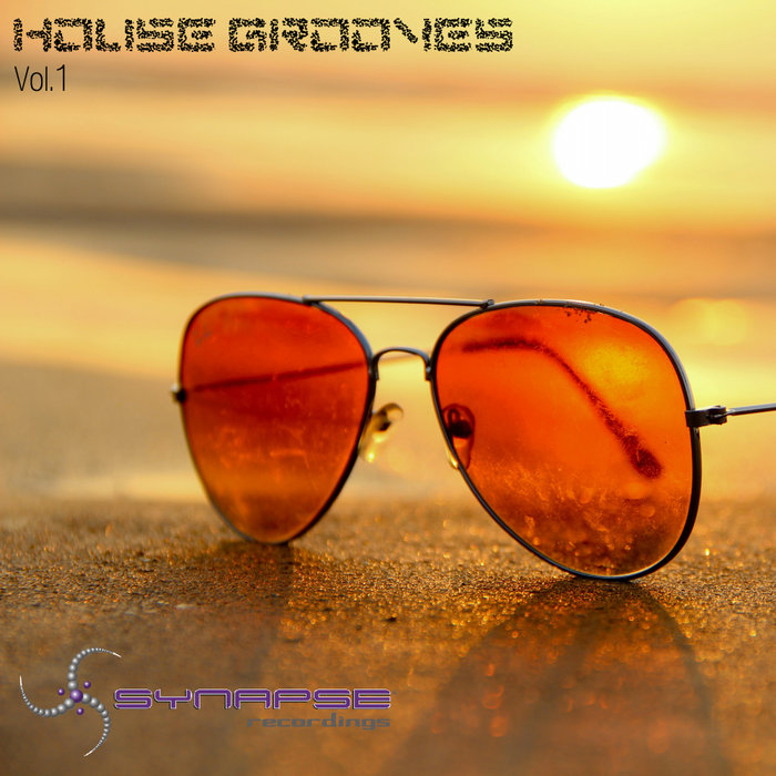 VARIOUS - House Grooves Vol 1