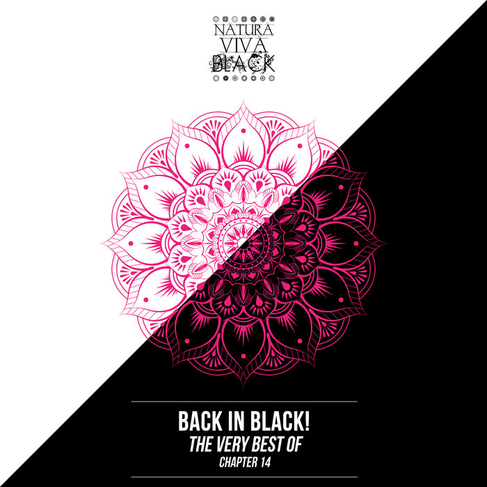 VARIOUS - Back In Black! (The Very Best Of) Chapter 14