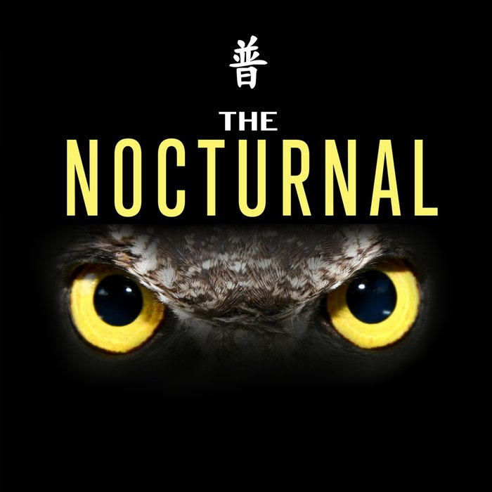 HARLEY D/INDECISION/TEEJ/SCOTTY - The Nocturnal