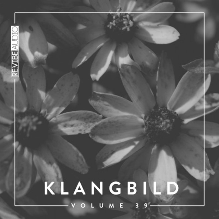 VARIOUS - Klangbild Vol 39