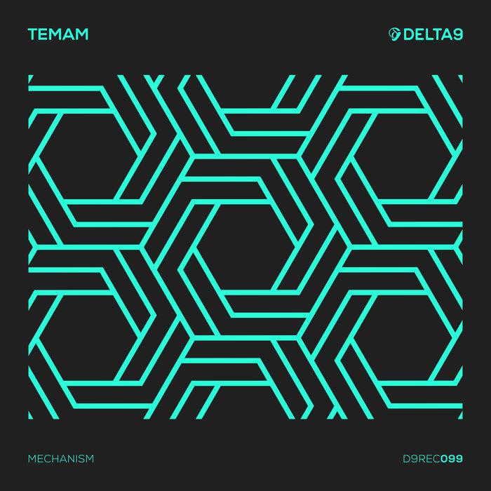 TEMAM - Mechanism