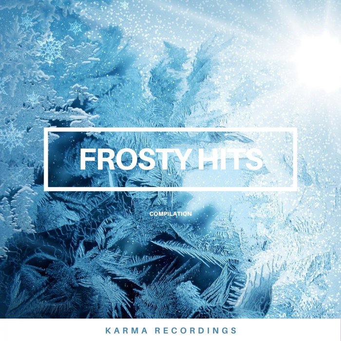 VARIOUS - Frosty Hits