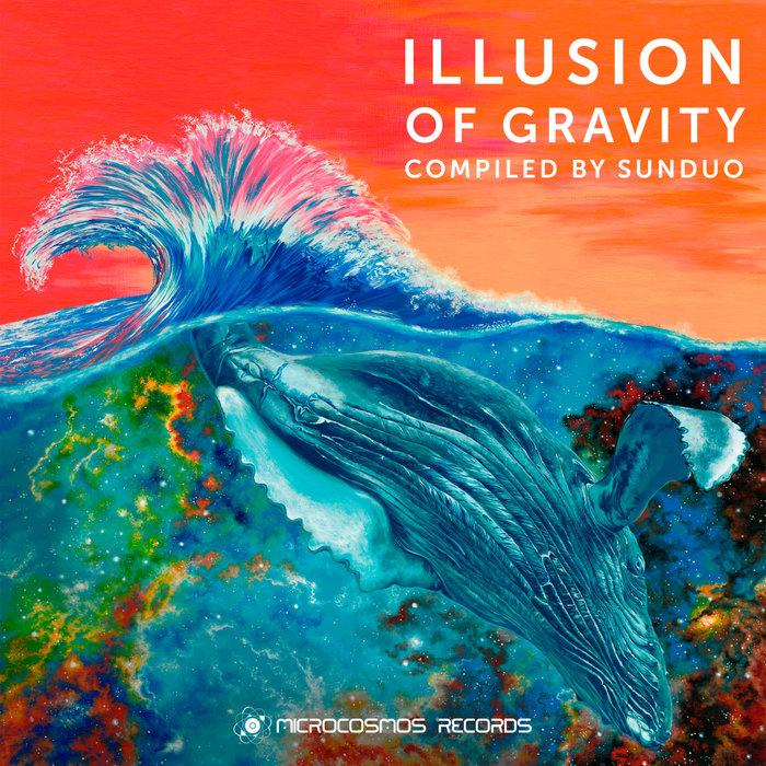 VARIOUS - Illusion Of Gravity