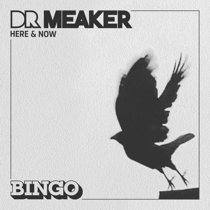 DR MEAKER - Here & Now