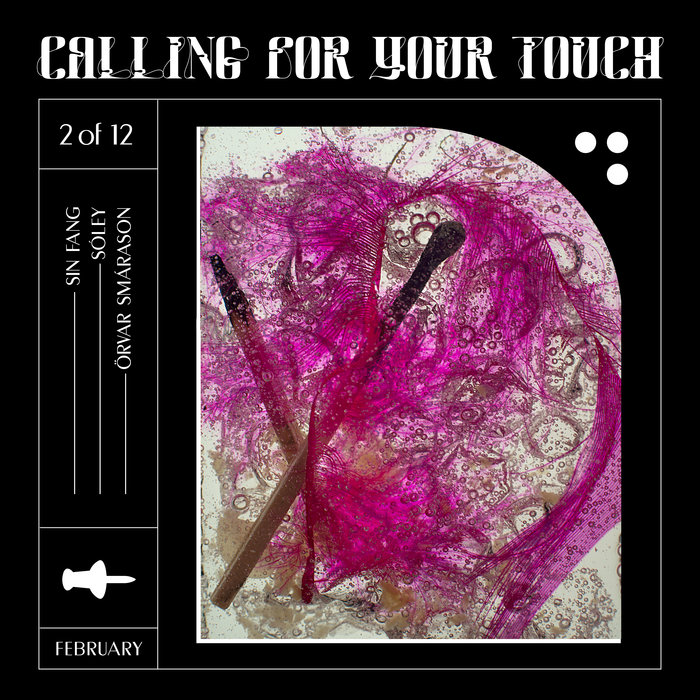 SIN FANG/SOLEY/ORVAR SMARASON - Calling For Your Touch