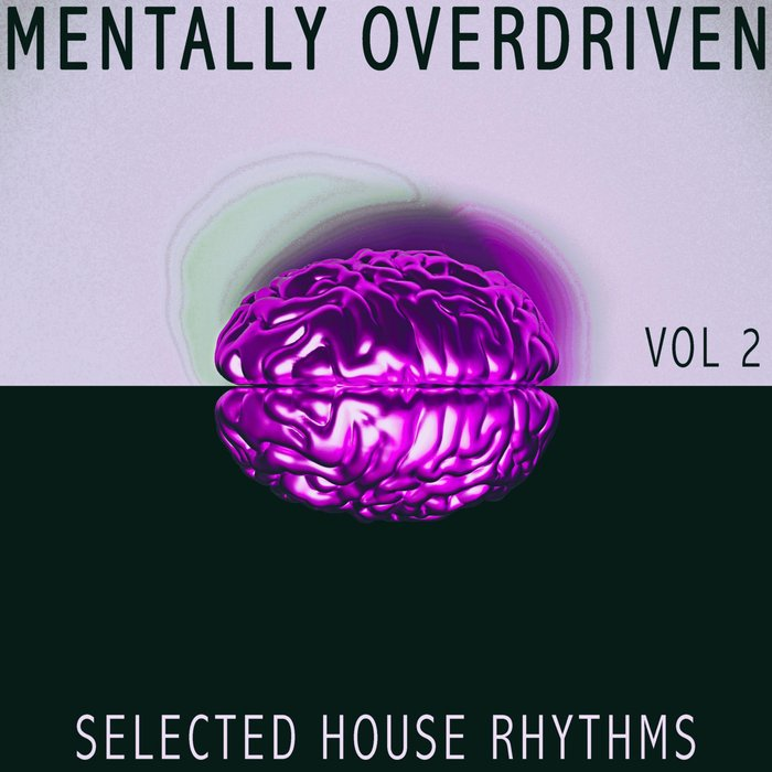 VARIOUS - Mentally Overdriven Vol 2 - Selected House Rhythms