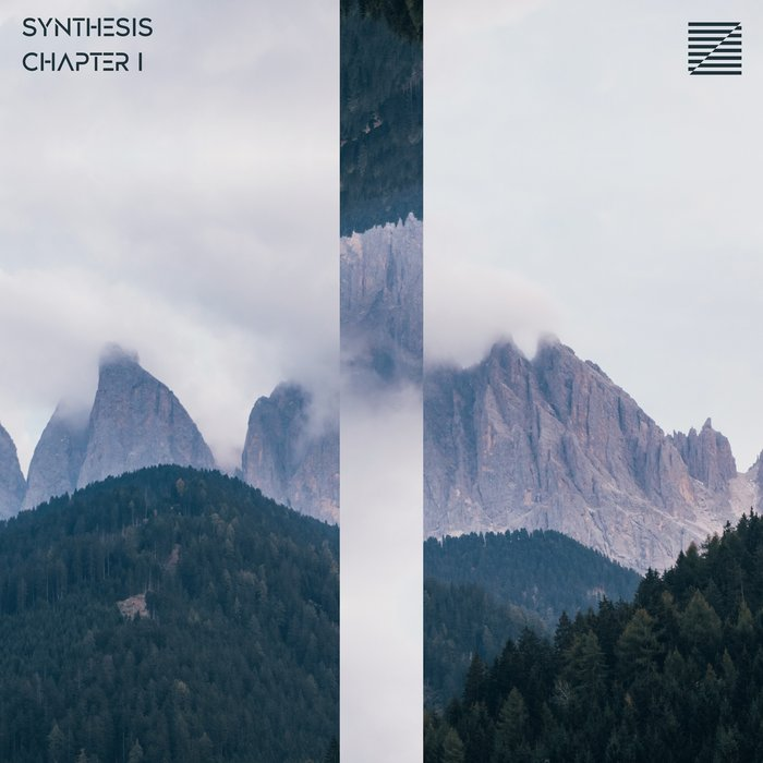 VARIOUS - Synthesis Chapter I