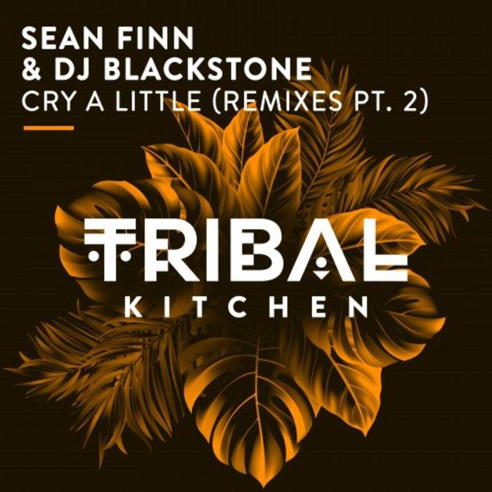 SEAN FINN/DJ BLACKSTONE - Cry A Little (Remixes Part 2)