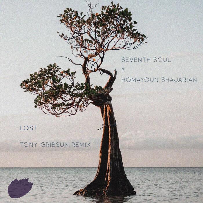 HOMAYOUN SHAJARIAN/SEVENTH SOUL - Lost (Tony Gribsun Remix)