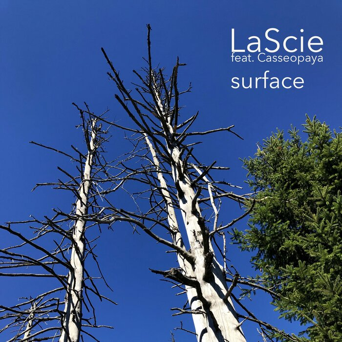 LASCIE feat CASSEOPAYA - Surface