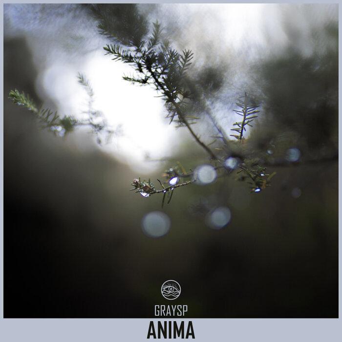 GRAYSP - Anima