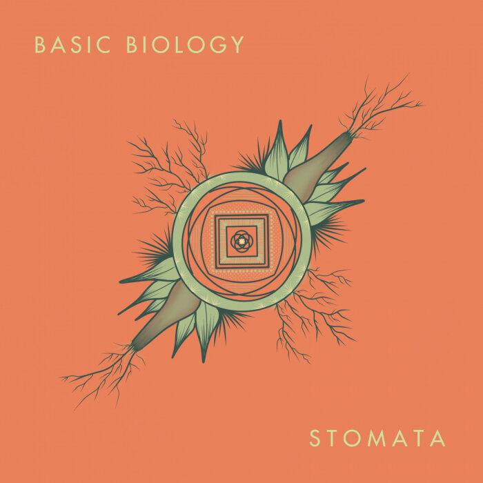 Download Basic Biology - Stomata LP mp3