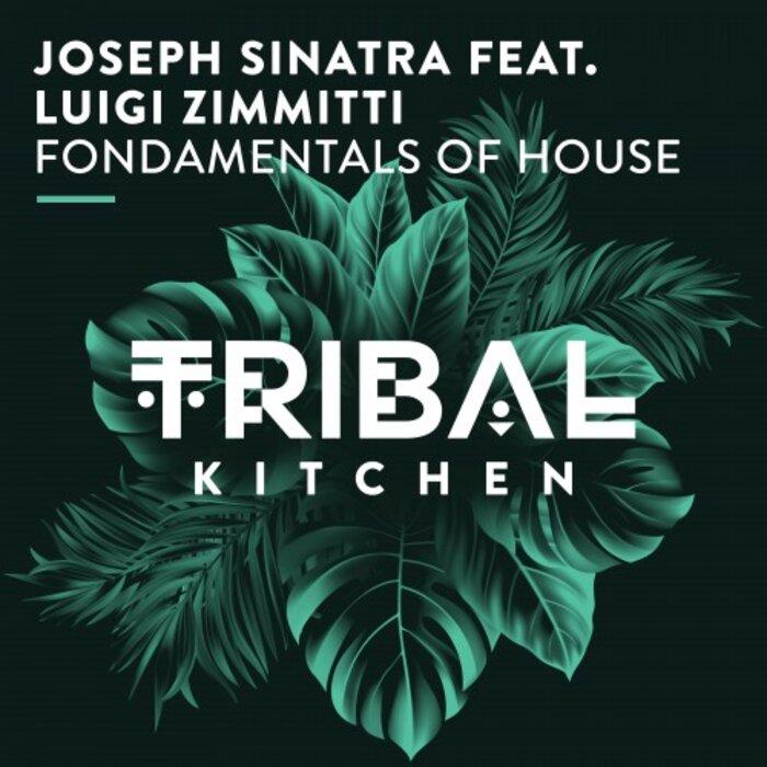 JOSEPH SINATRA feat LUIGI ZIMMITTI - Fondamentals Of House