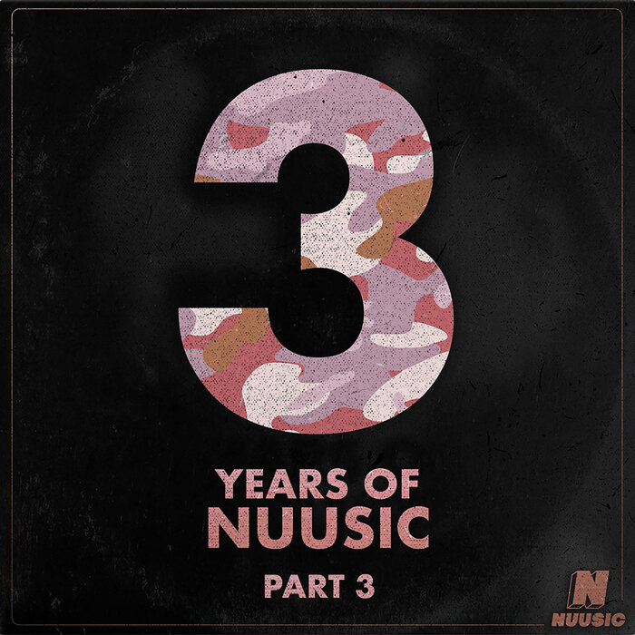 VARIOUS - 3 Years Of Nuusic - Part 3
