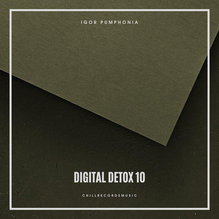 Igor Pumphonia - Digital Detox 10