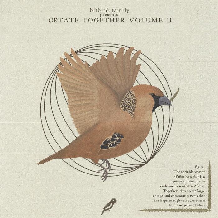 Download VA - bitbird create together vol.2 mp3