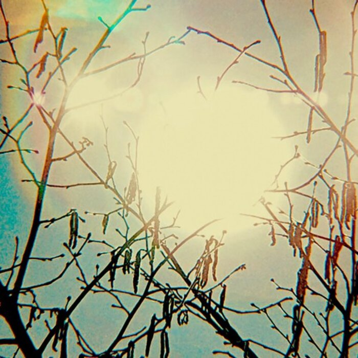TRENTEMOLLER - Golden Sun