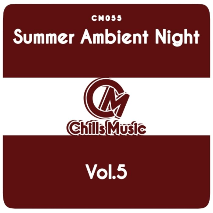 Various - Summer Ambient Night Vol 5