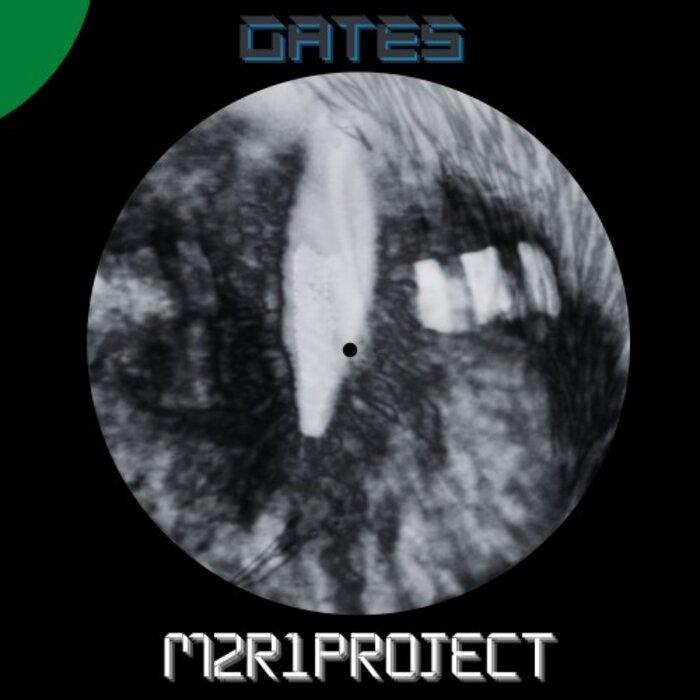 m2r1project - Gates