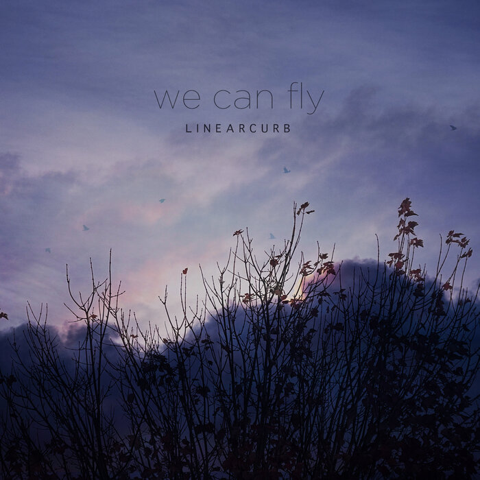 Download Linear Curb - We Can Fly mp3