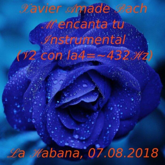 Xavier Amade Bach La4 en 432Hz - M'encanta Tu