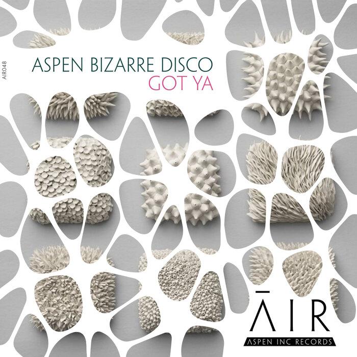 Aspen Bizarre Disco - Got Ya (Original Mix)