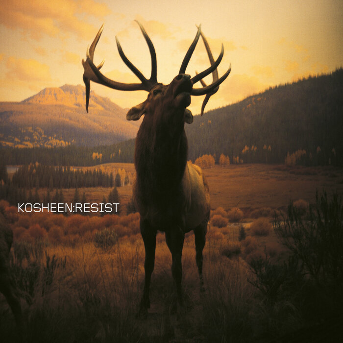 Download Kosheen - Resist (2021 Remaster) mp3
