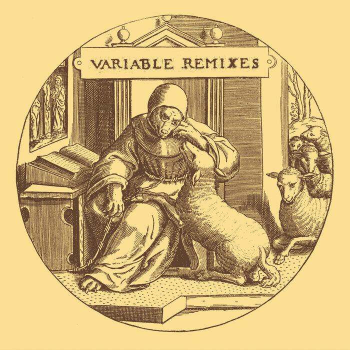VARIOUS - Variable Remixes